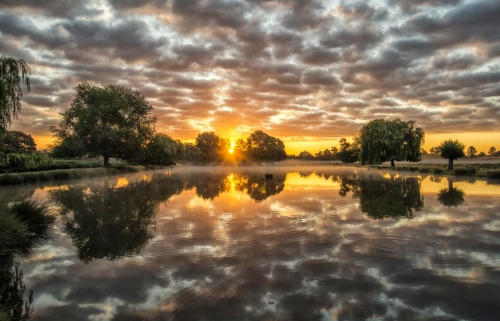 photo_BushyParkSunrise1_patlinberg