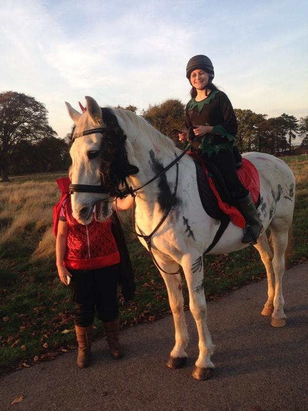 Even the horses join in dressing up for The Halloween Ride at Park Lane Stables. Photo: Rowena Dorling